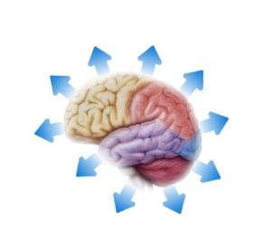 cervello_frecce_azzurre2